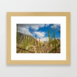 Summer in Connemara mountains Framed Art Print