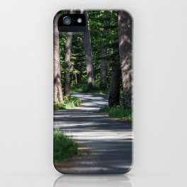 Itasca's Winding Road iPhone Case