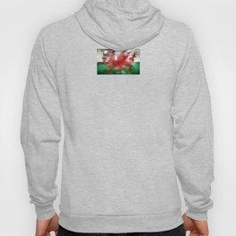 Wales - Cymru Hoody