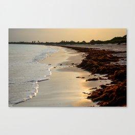 Sandy Sunset Canvas Print
