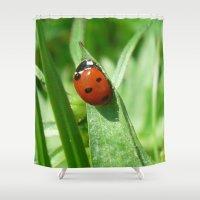ladybug Shower Curtains featuring Ladybug by MehrFarbeimLeben