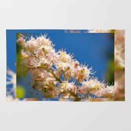 Macro of blooming Aesculus Rug