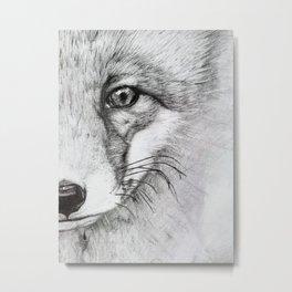 Eye of a Fox Metal Print