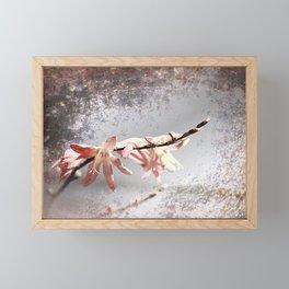 Elegant Coral colored Crocosmia Flowers Framed Mini Art Print