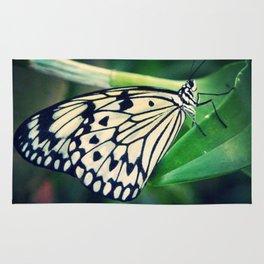 monarch Rug