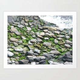 sea stones Art Print