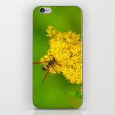 Paper Wasp - Yellow Flowers iPhone & iPod Skin