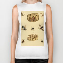 Bees Wasps And Honeycomb Biker Tank