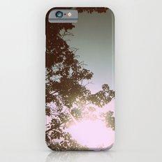 Sun Burned Leaves iPhone 6s Slim Case