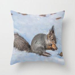 Hard nut to crack Throw Pillow