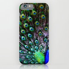 All eyes on you Mr. Peacock Slim Case iPhone 6s