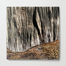 tree bark and wood Metal Print