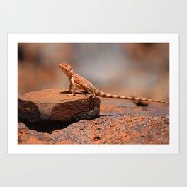 Karijini Lizard Art Print
