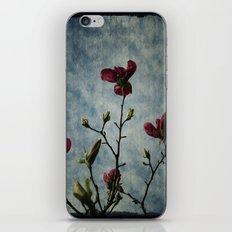 Magnolia Red iPhone & iPod Skin