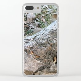 Frozen morning Clear iPhone Case