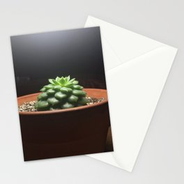 Yawp - Echeveria Succulent Stationery Cards