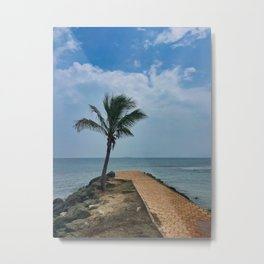 Single Palm Tree Metal Print