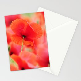 #poppies #square #mural Mural in #Close up Stationery Cards