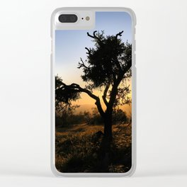 Singular Almond At Gold Sunset Clear iPhone Case