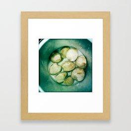Cherrystones Framed Art Print