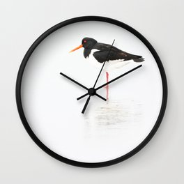 scholeksters scholekster high key oystercatcher  Wall Clock