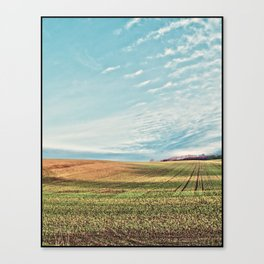 Sunlit Fields Canvas Print