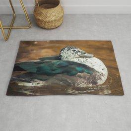 Knob-billed Duck Rug