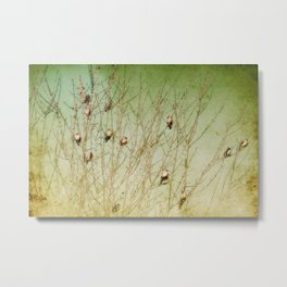 The Berry Snatchers Metal Print