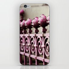 Metz Gate iPhone & iPod Skin