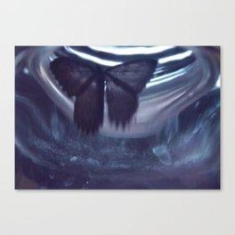Moth-89 Canvas Print