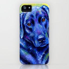 Colorful Labrador Retriever Dog iPhone Case
