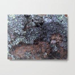 Intimate Tree #1 Metal Print