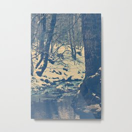 The wood Metal Print