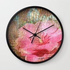 late flowering Wall Clock