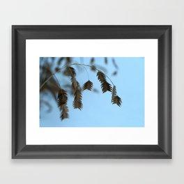 Gentle Framed Art Print