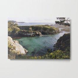 Point Lobos, California Metal Print