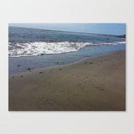 Black sand beach, El Salvador 2 Canvas Print