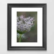 Wildling - No. 1 Framed Art Print