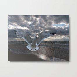 Evening Landing Metal Print