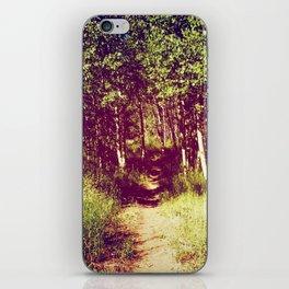 Narrow is the Path iPhone Skin