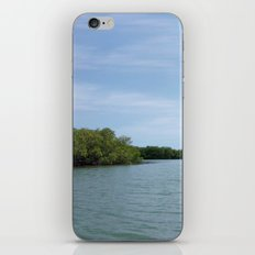 The Fisherman estuary iPhone & iPod Skin