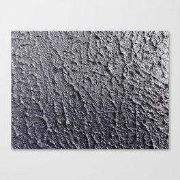Paint texture Canvas Print