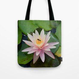 Bee with Pink Waterlily Tote Bag