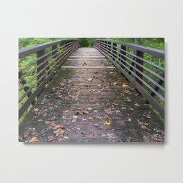Bridge Crossing on The Chattooga River Trail Metal Print