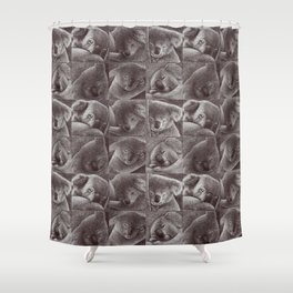 Sleepy Koala Shower Curtain