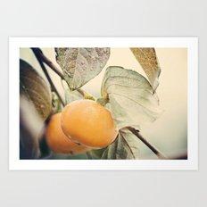 Autumn Peach Art Print