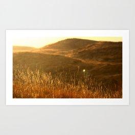 Golden hills Art Print