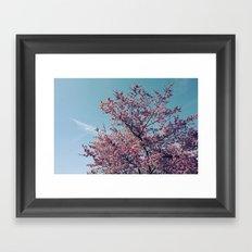 Blossom Into Spring Framed Art Print
