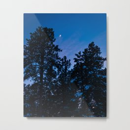 Winter Night and Moon Metal Print