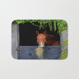 Home is where the Horse is Bath Mat